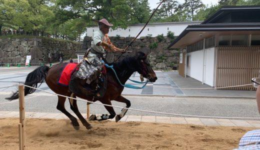 【週報】焼きカレー・ギラヴァンツ・流鏑馬(2019.05.13~05.19)