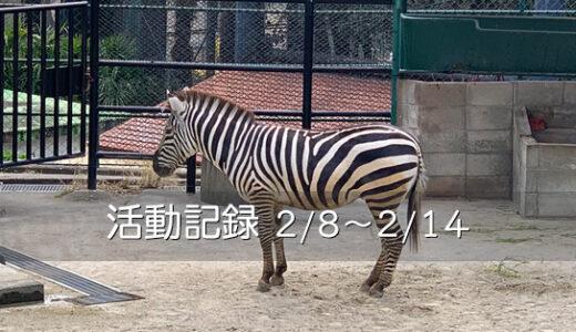 【活動記録】徒歩で福岡市動植物園へ(2021.02.08~02.14)