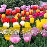 【活動記録】家電の故障が続く日々(2021.03.29~04.04)